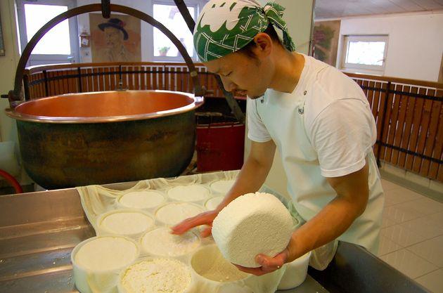 Miti-kaas-maken