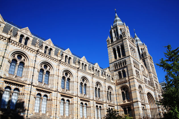 national_history_museum_londen