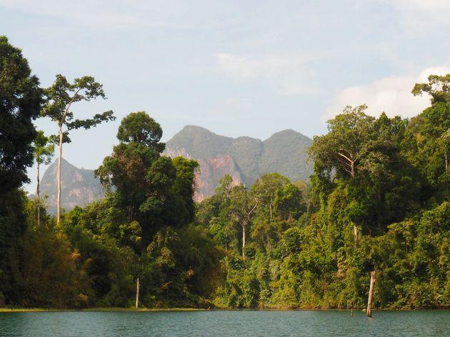 Natuur Cheow Lan meer (11)
