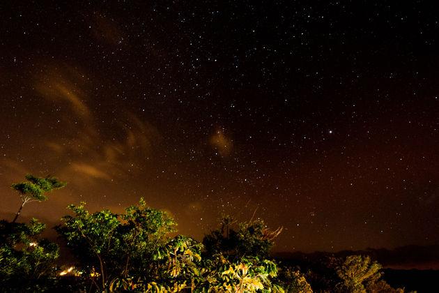 nightwalk-costa-rica