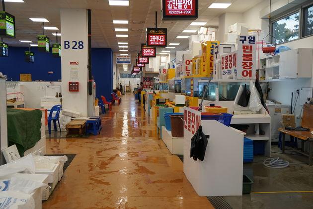Noryangjin_Vismarkt_Seoul_16