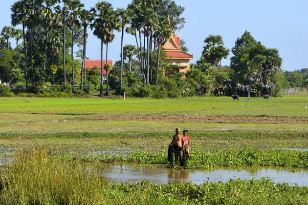 Omgeving-Siem-Reap-Cambodja