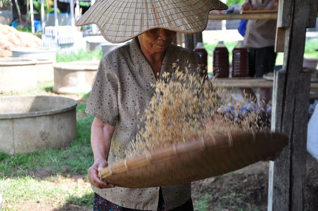 organische-rijst-thailand