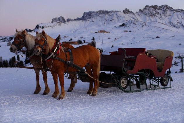 paardenslee-sneeuw-zuid-tirol