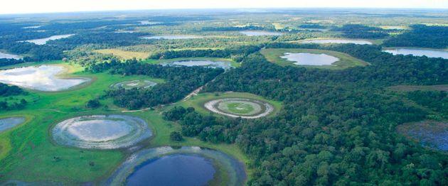 pantanal-brazilie