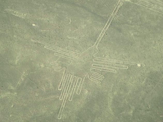 peru-reis-nazca-lijnen-vogel