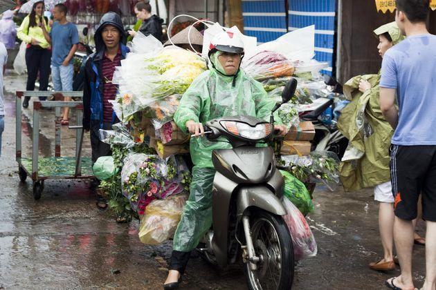 regen-vietnam