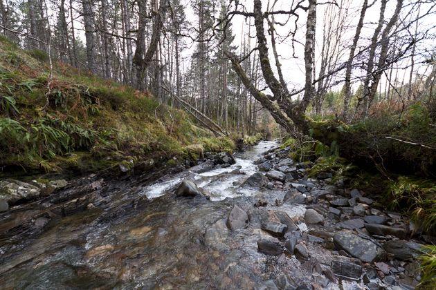 rivier-schotland