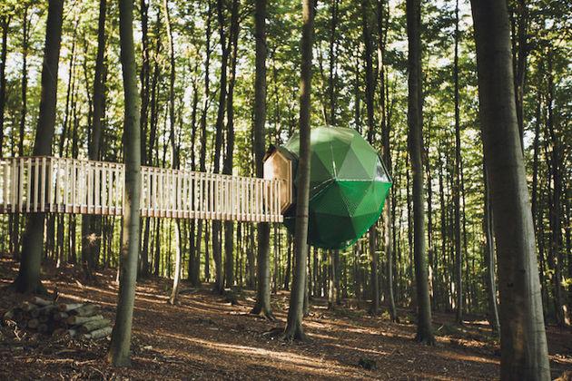 robins-nest-boomhut-1