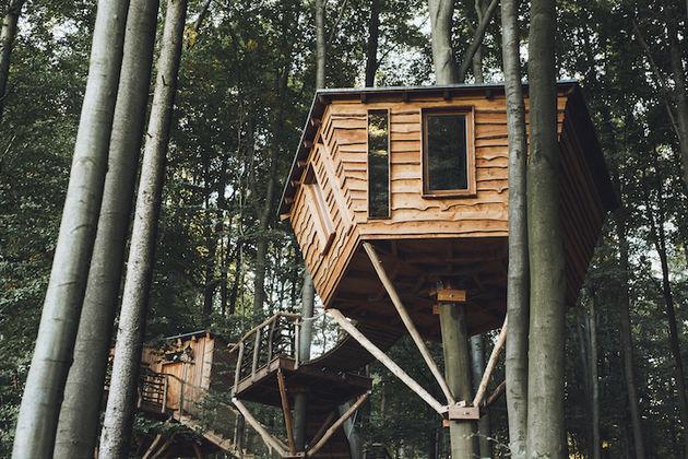robins-nest-boomhut-2
