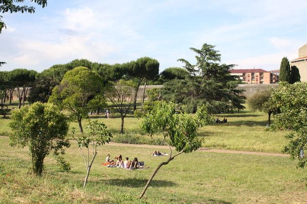 Rome-park-2