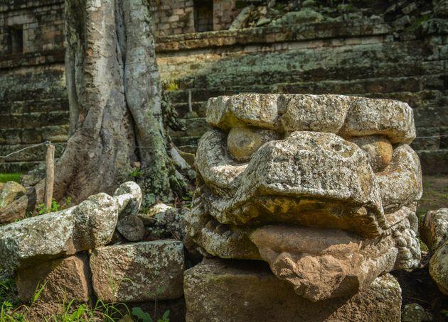 Ruines-Copan-honduras-drakenkop