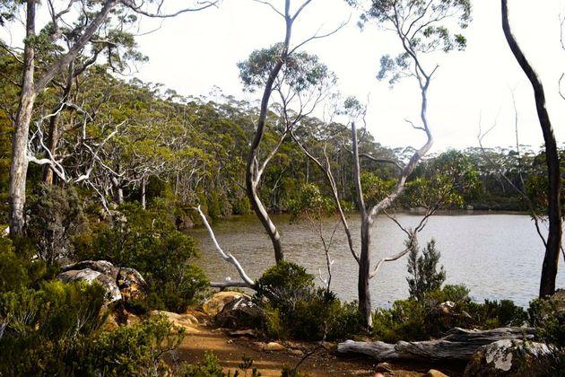 rust_natuur_tasmanie