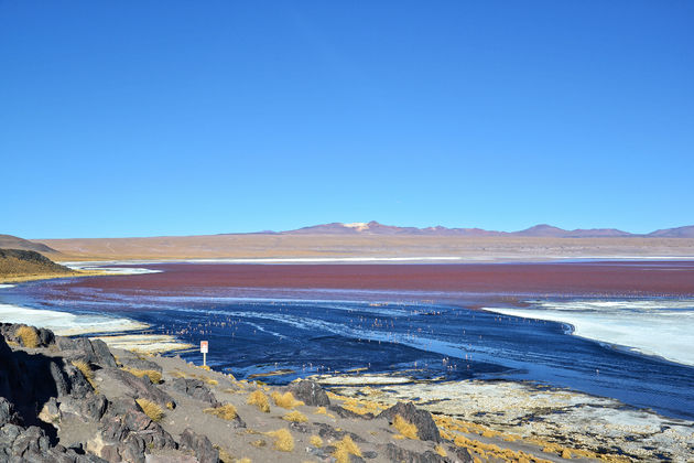 salar-de-uyuni-Rood-meer