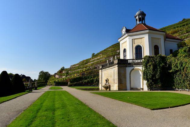 Schloss-Wackerbarth-wijn-4
