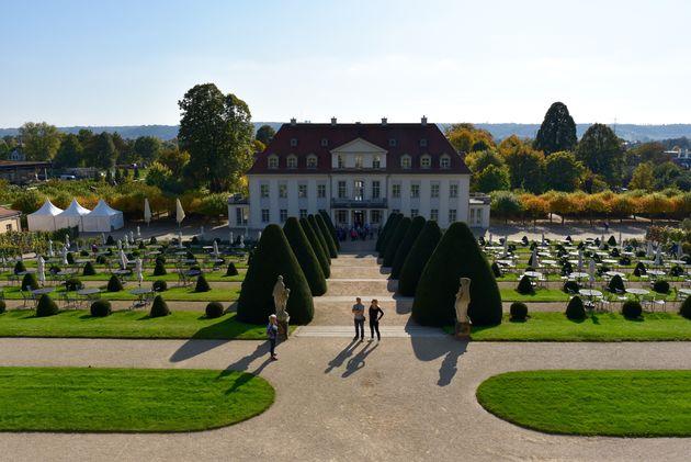 Schloss-Wackerbarth-wijn-5