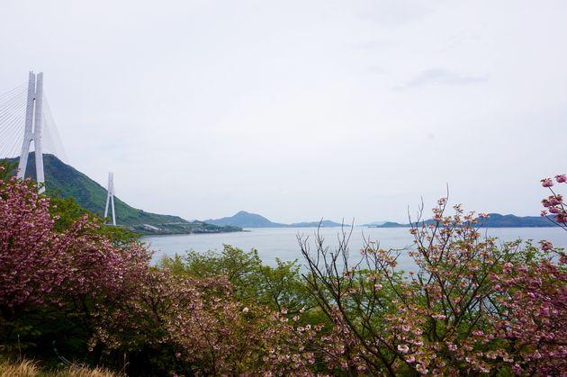 Shimanami-Kaido-cycling-path-3