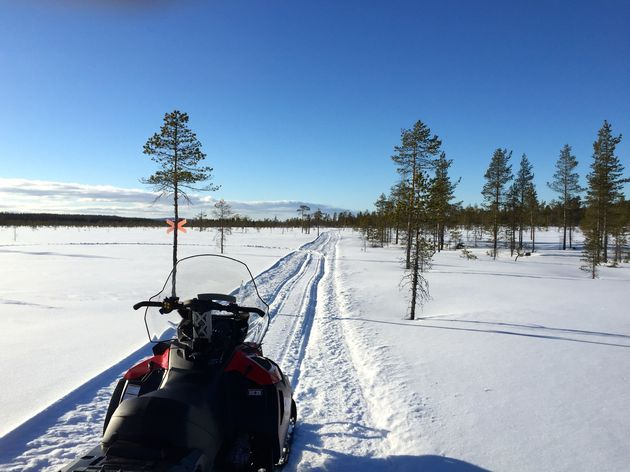sneeuwscootertocht-gold-of-lapland