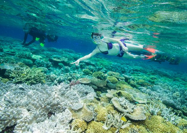 snorkelen-great-barrief-reef