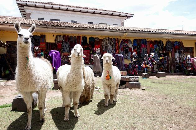 stadstour_cuzco