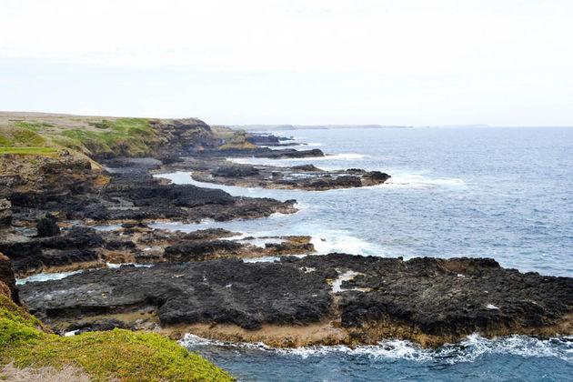the_nobbies_phillip_island