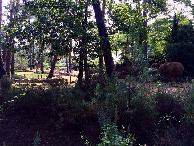Travelvalley_dierentuin