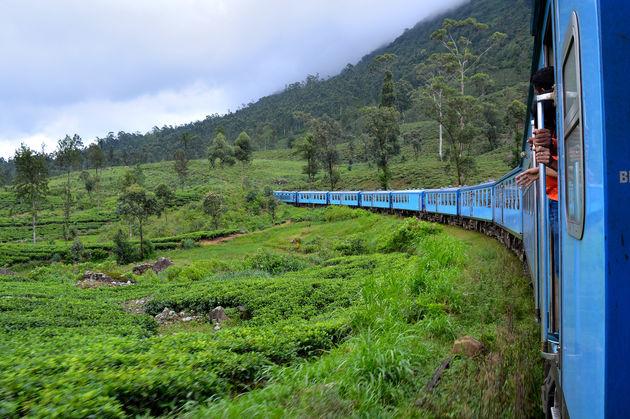 trein-rondreis-sri-lanka