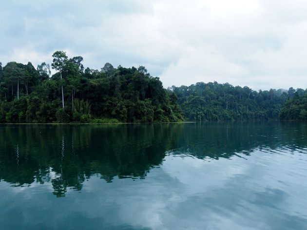 Uitzicht vanuit je tent Elephant Hills Rainforest Camp (3)