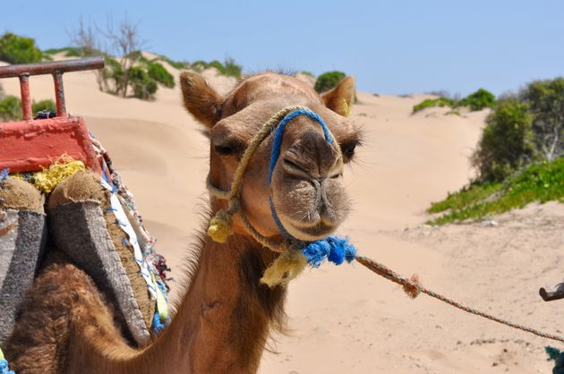 verliefd-op-marokko-foto's - 29