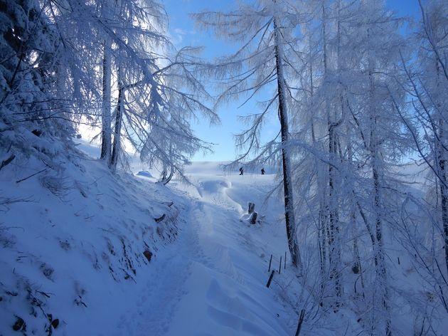 verse-sneeuw-Kitzbüheler-Horn.jpg