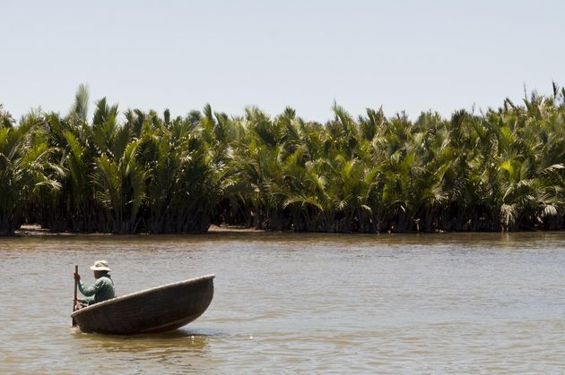 vietnamese-visser