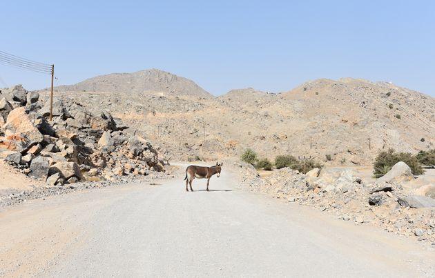 weg-oman-ezel