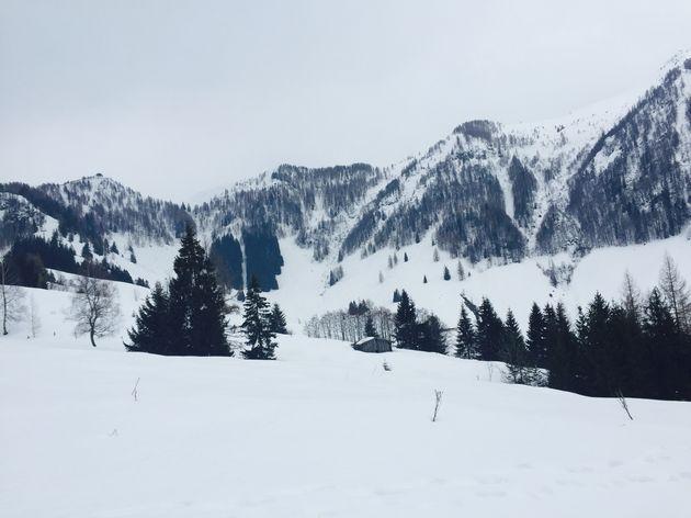 winter-skicircus