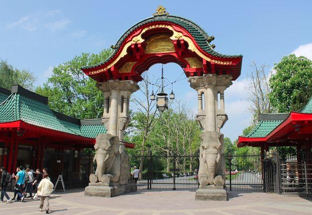 zoo-berlin-dierentuin