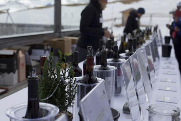 zuid-tirol-wine-tasting