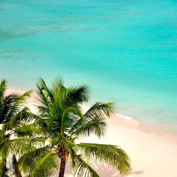 10 tekenen dat jij écht aan vakantie toe bent