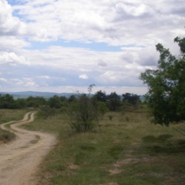 Fietsen en wandelen in Zuid Moravië