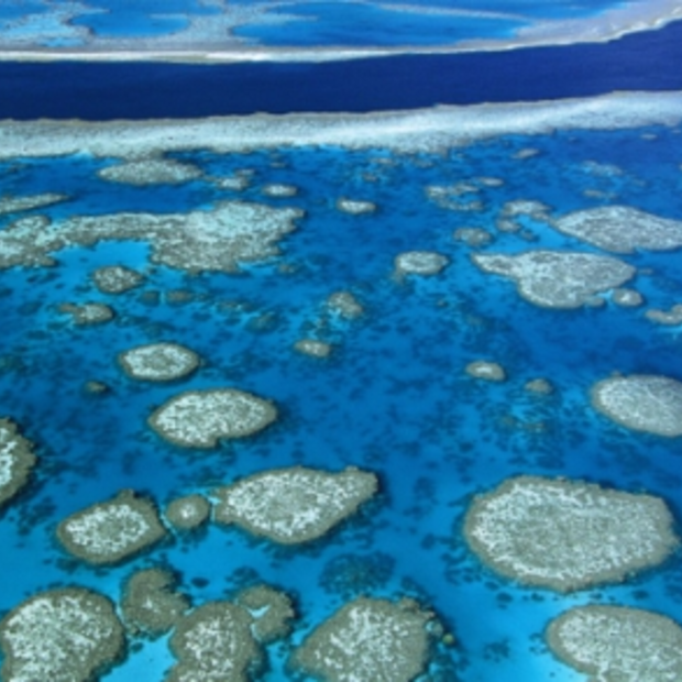 Great Barrief Reef binnenkort op Google Street View