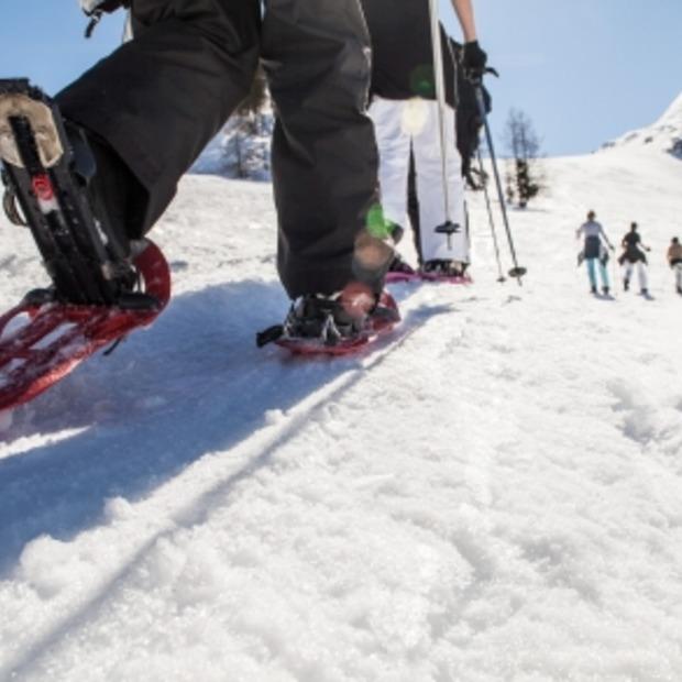Wintersporten zonder ski's