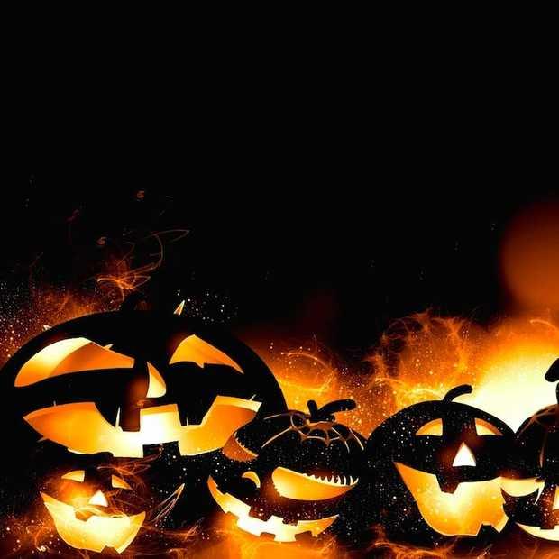 De leukste plekken om Halloween te vieren