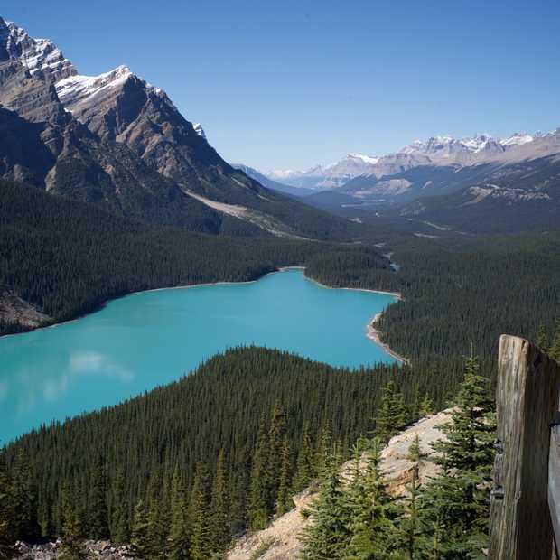 Genieten van zomer in Canada in vier minuten