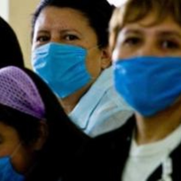 Nog geen maatregelen Schiphol i.v.m. varkensgriep