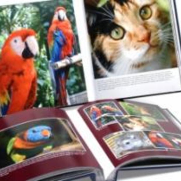 Digitale albums van Pixum een aanrader