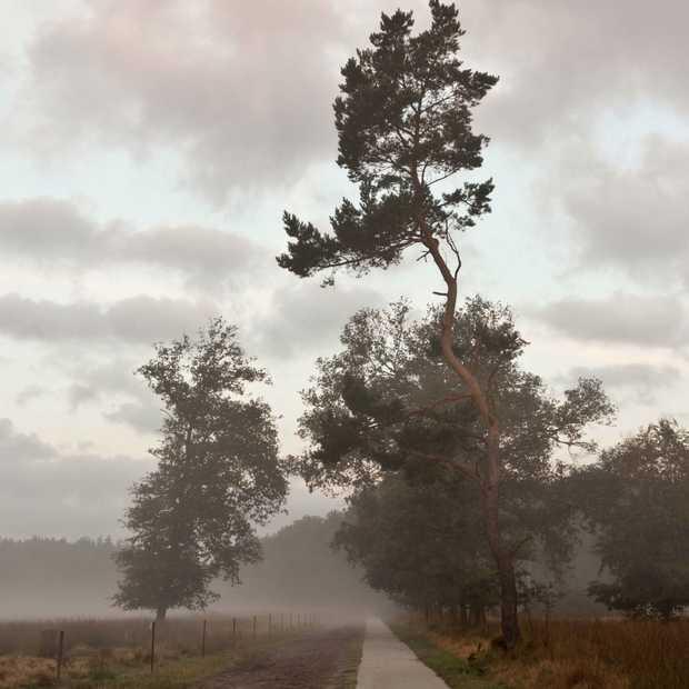 Tips voor fotograferen in de herfst!
