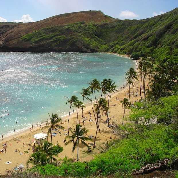 Hawaii: paradijslijk eiland, surfen en ananasplantages!
