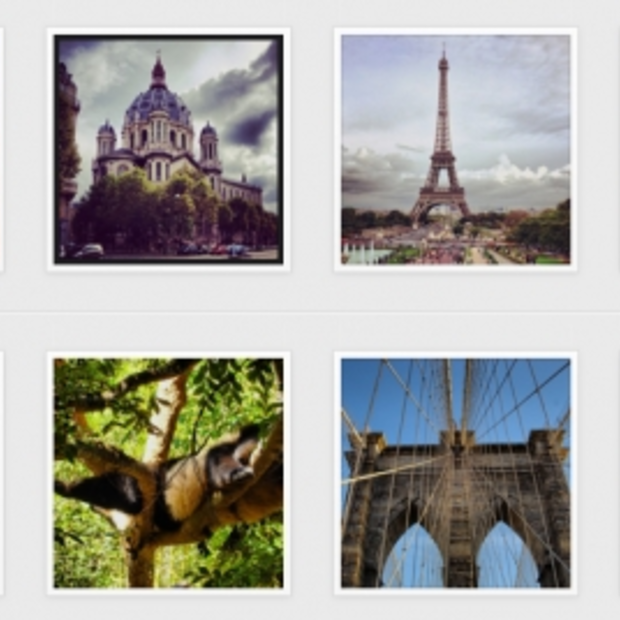 5 must follow nature accounts op Instagram