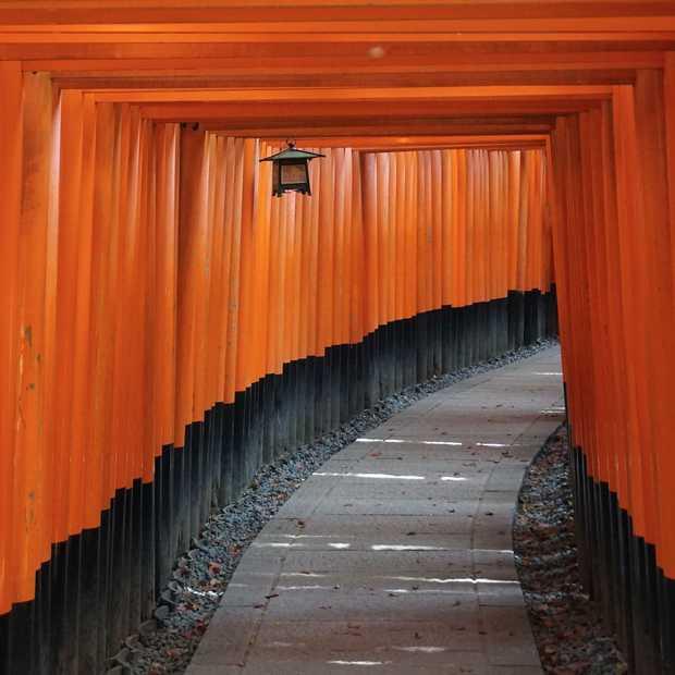 Kyoto: wat je wilt doen in de stad van de tempels