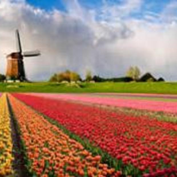 Meer Nederlanders vieren vakantie in eigen land