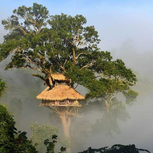 The Gibbon Experience in Laos: slapen en ziplinen in de jungle
