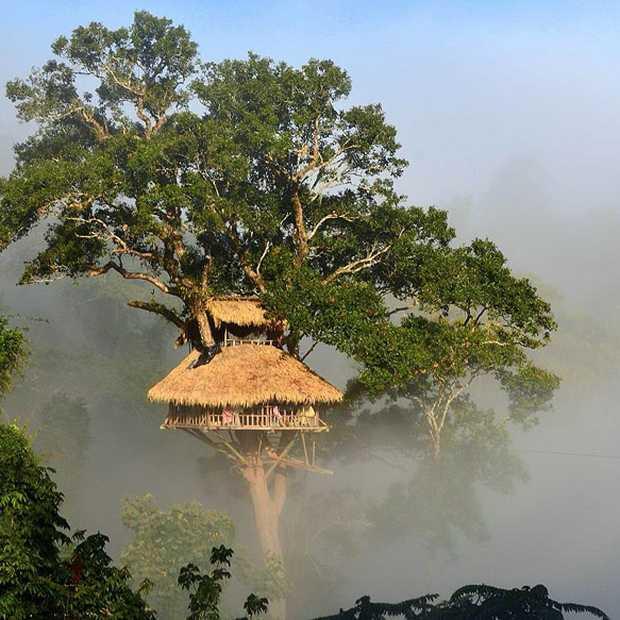 The Gibbon Experience in Laos: slapen en ziplinen in de jungle